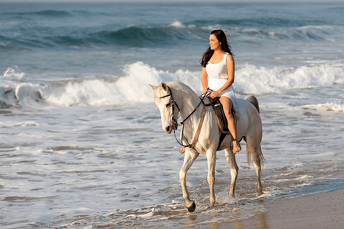 Horseback Ride along Phuket West Coast